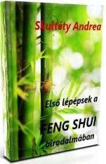 Geng Shui e-book