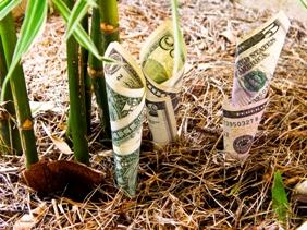 Feng Shui szimbólum a pénz